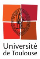 logo_pres_universitc3a9_de_toulouse